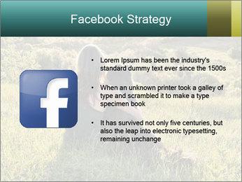 0000079789 PowerPoint Template - Slide 6