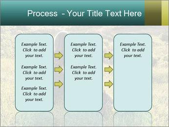 0000079789 PowerPoint Template - Slide 86