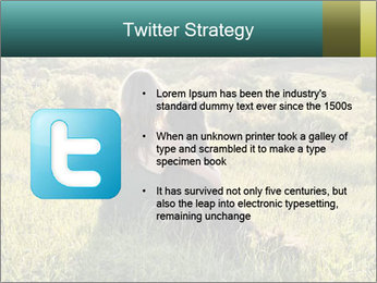 0000079789 PowerPoint Template - Slide 9