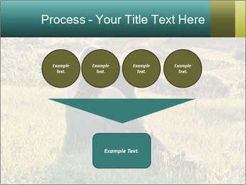0000079789 PowerPoint Template - Slide 93