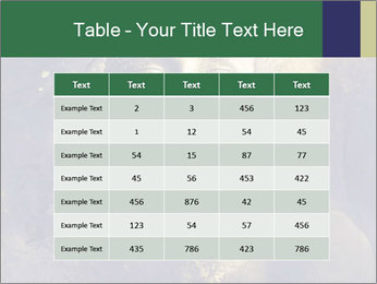 0000079798 PowerPoint Templates - Slide 55