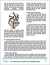 0000079804 Word Templates - Page 4