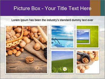 0000079806 PowerPoint Templates - Slide 19