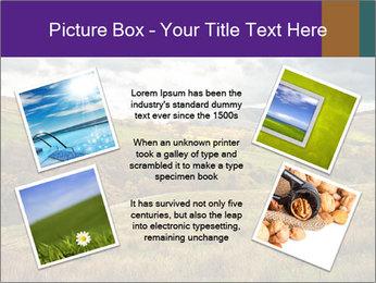 0000079806 PowerPoint Templates - Slide 24
