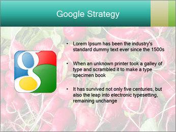 0000079811 PowerPoint Template - Slide 10