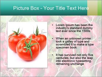 0000079811 PowerPoint Template - Slide 13