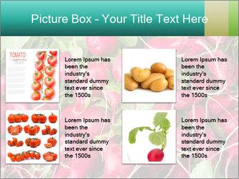0000079811 PowerPoint Template - Slide 14