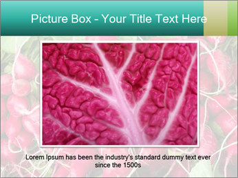 0000079811 PowerPoint Template - Slide 16