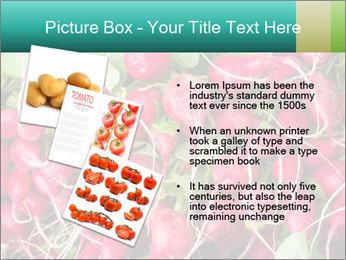 0000079811 PowerPoint Template - Slide 17