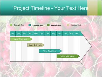 0000079811 PowerPoint Template - Slide 25