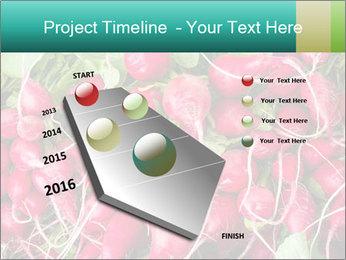 0000079811 PowerPoint Template - Slide 26