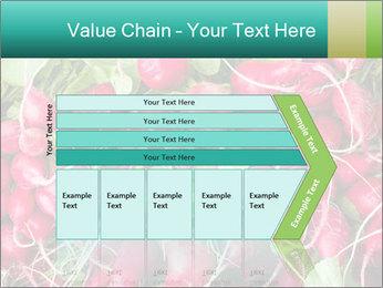 0000079811 PowerPoint Template - Slide 27