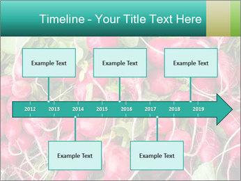 0000079811 PowerPoint Template - Slide 28