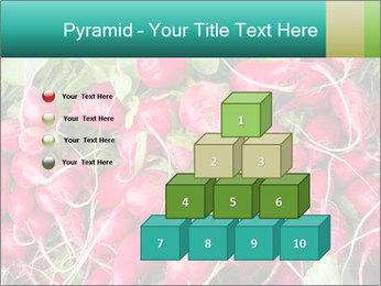 0000079811 PowerPoint Template - Slide 31