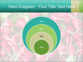 0000079811 PowerPoint Template - Slide 34
