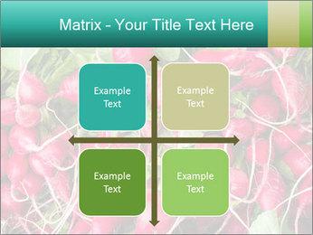 0000079811 PowerPoint Template - Slide 37