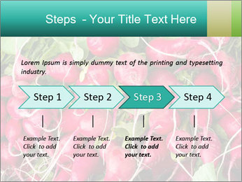 0000079811 PowerPoint Template - Slide 4