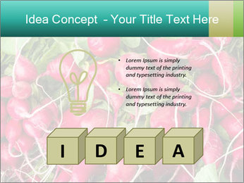 0000079811 PowerPoint Template - Slide 80