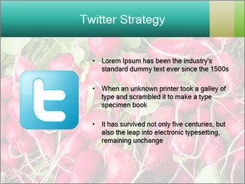 0000079811 PowerPoint Template - Slide 9