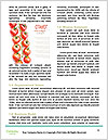 0000079811 Word Template - Page 4