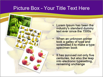 0000079817 PowerPoint Template - Slide 17