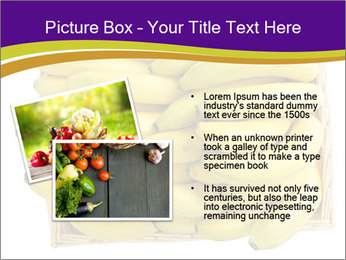 0000079817 PowerPoint Template - Slide 20
