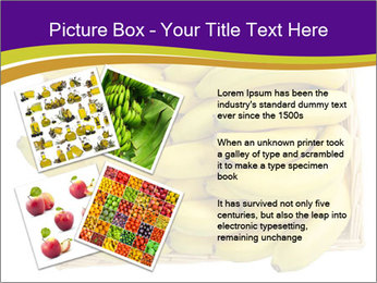 0000079817 PowerPoint Template - Slide 23