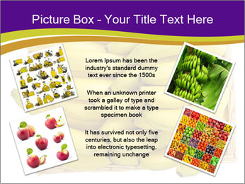 0000079817 PowerPoint Template - Slide 24