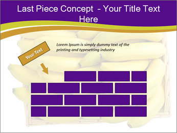 0000079817 PowerPoint Template - Slide 46