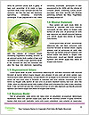 0000079818 Word Templates - Page 4