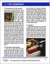 0000079819 Word Template - Page 3