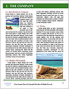 0000079820 Word Template - Page 3