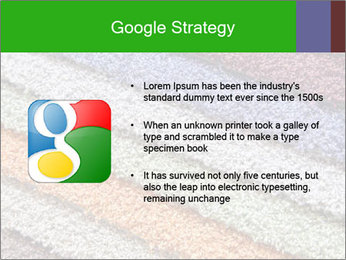 0000079821 PowerPoint Templates - Slide 10