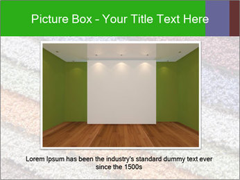 0000079821 PowerPoint Templates - Slide 15
