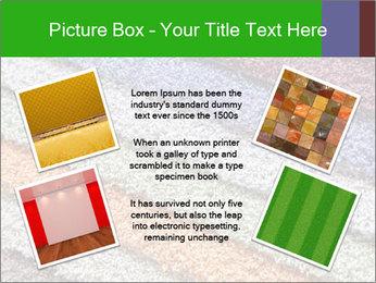 0000079821 PowerPoint Templates - Slide 24