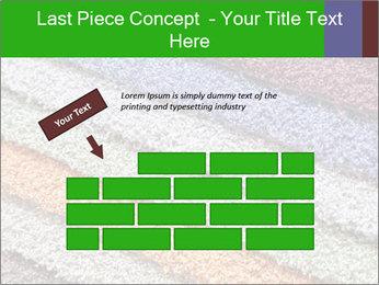 0000079821 PowerPoint Templates - Slide 46