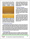 0000079821 Word Templates - Page 4