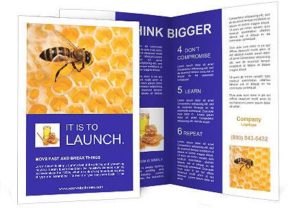 0000079822 Brochure Templates