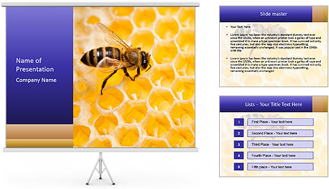 0000079822 PowerPoint Template