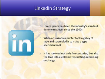 0000079822 PowerPoint Templates - Slide 12