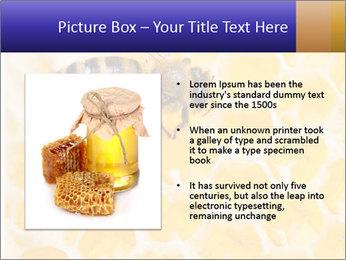 0000079822 PowerPoint Template - Slide 13