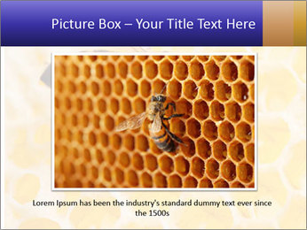 0000079822 PowerPoint Templates - Slide 15