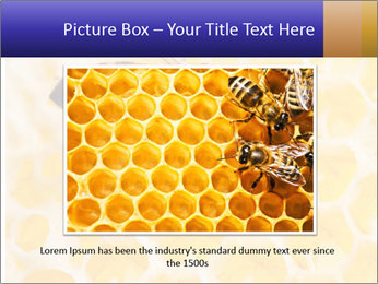 0000079822 PowerPoint Template - Slide 16
