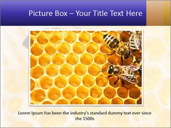 0000079822 PowerPoint Templates - Slide 16