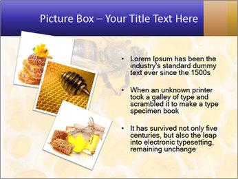 0000079822 PowerPoint Templates - Slide 17