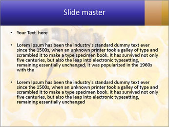 0000079822 PowerPoint Templates - Slide 2