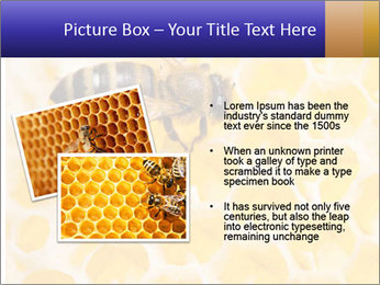 0000079822 PowerPoint Templates - Slide 20