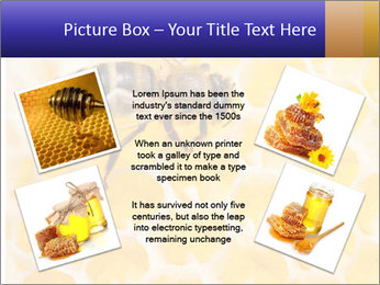 0000079822 PowerPoint Templates - Slide 24