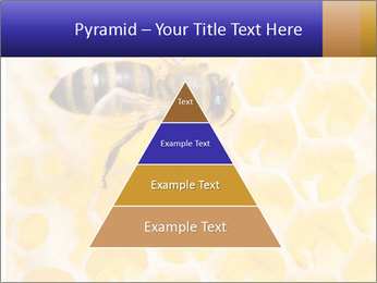 0000079822 PowerPoint Templates - Slide 30