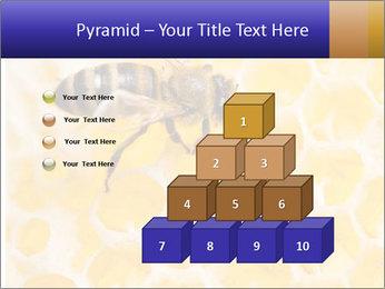 0000079822 PowerPoint Templates - Slide 31